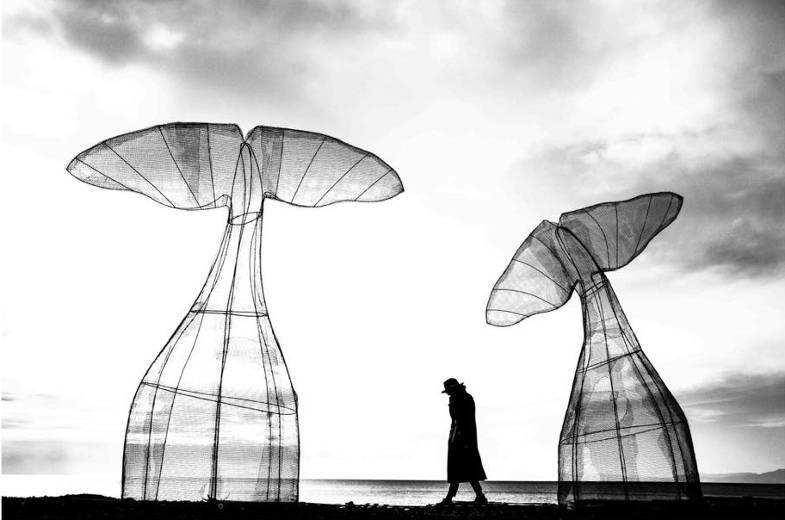 """2° CLASSIFICATO: Giorgio Galimberti con l'opera dal titolo """"Still life balene"""""""