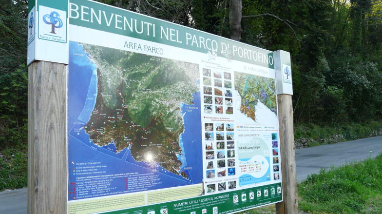 Trekking in Portofino's park: paths and other curiosity