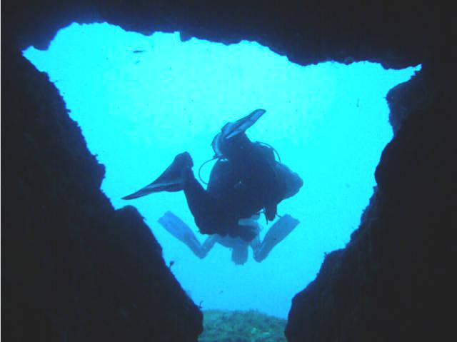 Grotta della Colombara, Diving a Portofino e Camogli