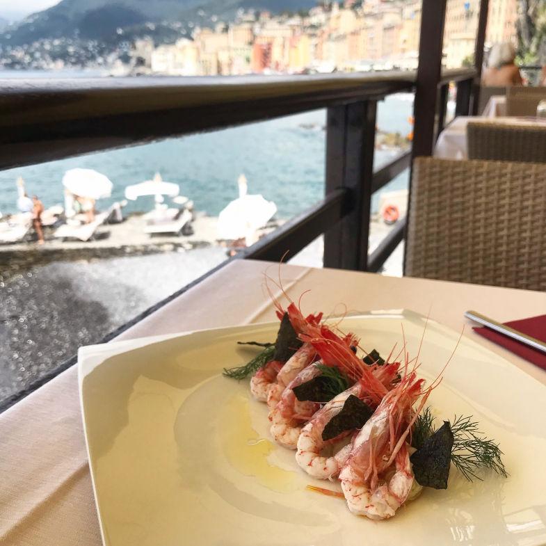 Piatto di Scampi al ristorante La Playa, con vista sul Golfo di Camogli